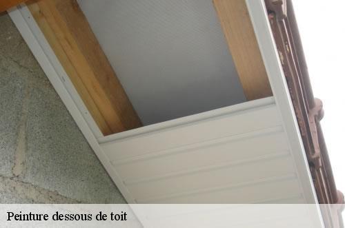 changement et peinture dessous de toit vincennes t l 01. Black Bedroom Furniture Sets. Home Design Ideas